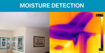 Thermal Imaging Moisture Detection